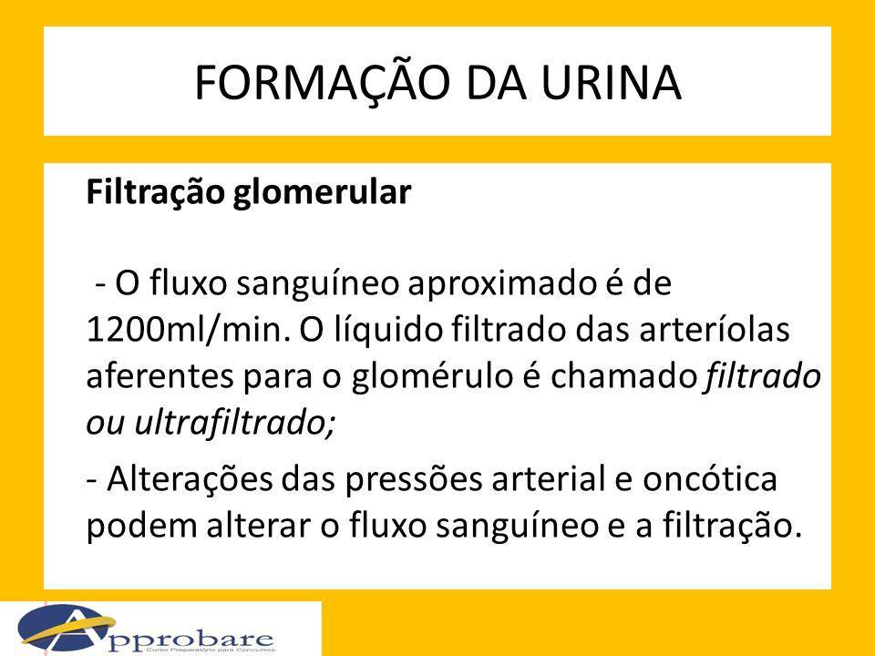 FORMAÇÃO DA URINA Filtração glomerular - O fluxo sanguíneo aproximado é de 1200ml/min. O líquido filtrado das arteríolas aferentes para o glomérulo é