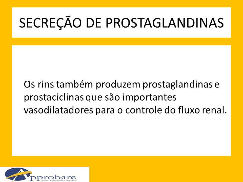 SECREÇÃO DE PROSTAGLANDINAS Os rins também produzem prostaglandinas e prostaciclinas que são importantes vasodilatadores para o controle do fluxo rena