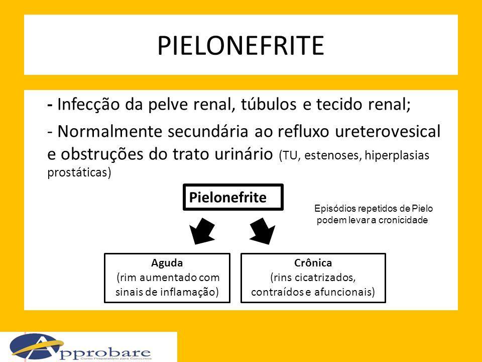 PIELONEFRITE - Infecção da pelve renal, túbulos e tecido renal; - Normalmente secundária ao refluxo ureterovesical e obstruções do trato urinário (TU,