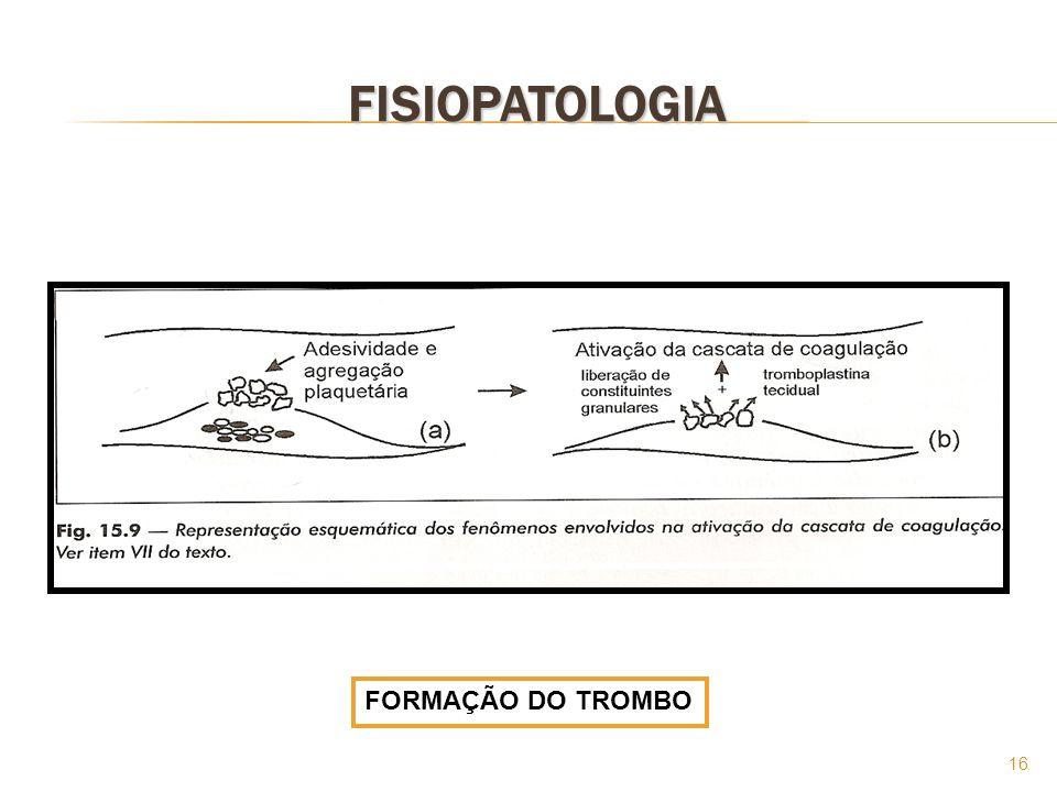 16 FISIOPATOLOGIA FORMAÇÃO DO TROMBO