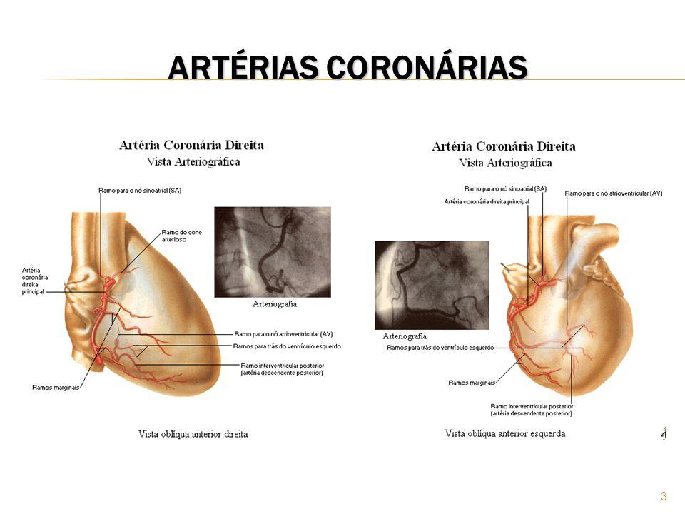 24 FISIOPATOLOGIA Estes mecanismos diminuem ou obstruem o lúmem da artéria coronariana, proporcionando redução do fluxo sangüíneo e desequilíbrio entre o consumo e a oferta de oxigênio pelo miocárdio.