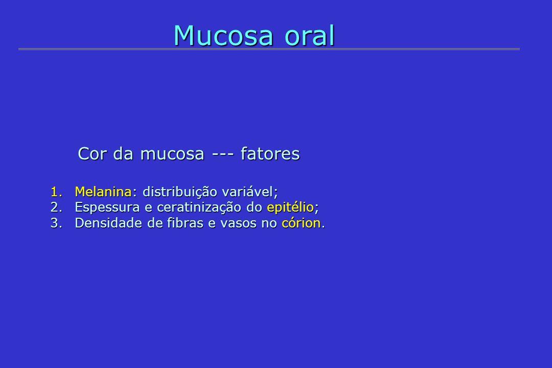 Mucosa oral Cor da mucosa --- fatores Cor da mucosa --- fatores 1.Melanina: distribuição variável; 2.Espessura e ceratinização do epitélio; 3.Densidad