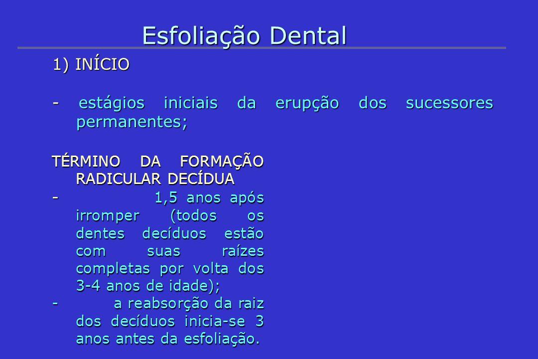Esfoliação Dental 1) INÍCIO - estágios iniciais da erupção dos sucessores permanentes; TÉRMINO DA FORMAÇÃO RADICULAR DECÍDUA - 1,5 anos após irromper