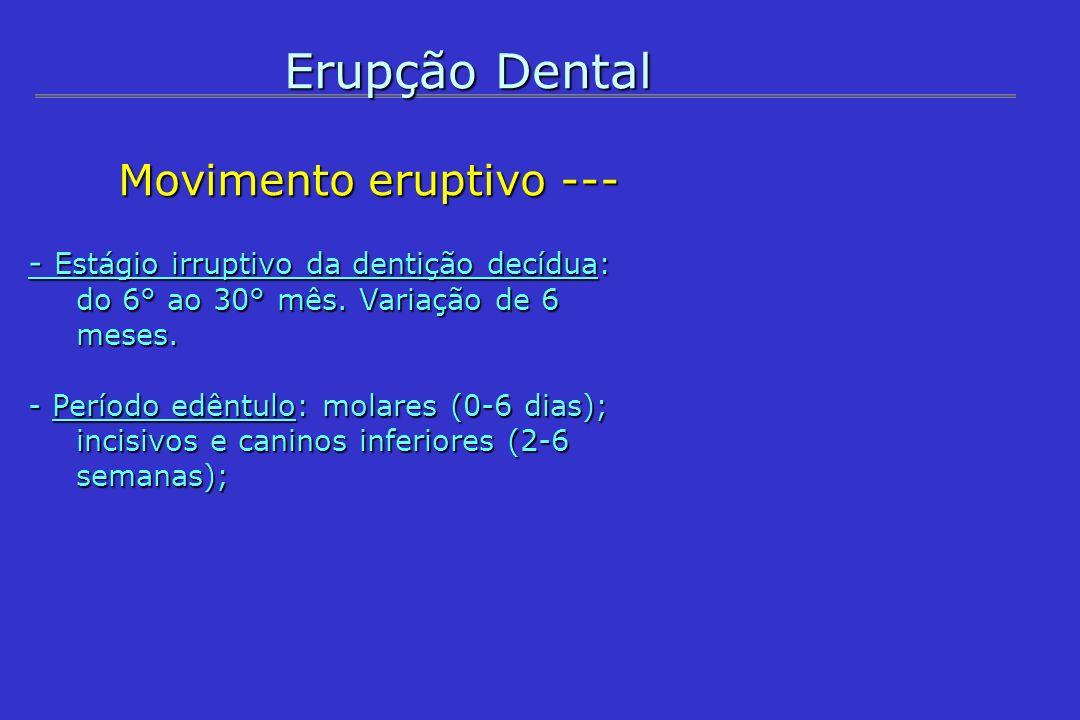 Erupção Dental Movimento eruptivo --- Movimento eruptivo --- - Período de infra-oclusão pós- irrupção: maior risco de lesão cariosa.