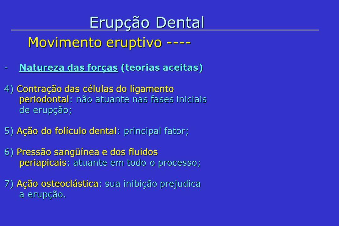 Erupção Dental Movimento eruptivo ---- Movimento eruptivo ---- -Ações hormonal e molecular (erupção como evento programado e localizado) 1) Hormonal: tiroxina e hidrocortisona aceleram erupção.