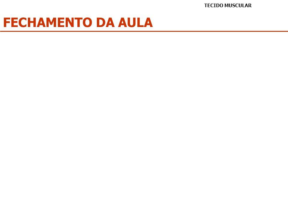 FECHAMENTO DA AULA TECIDO MUSCULAR