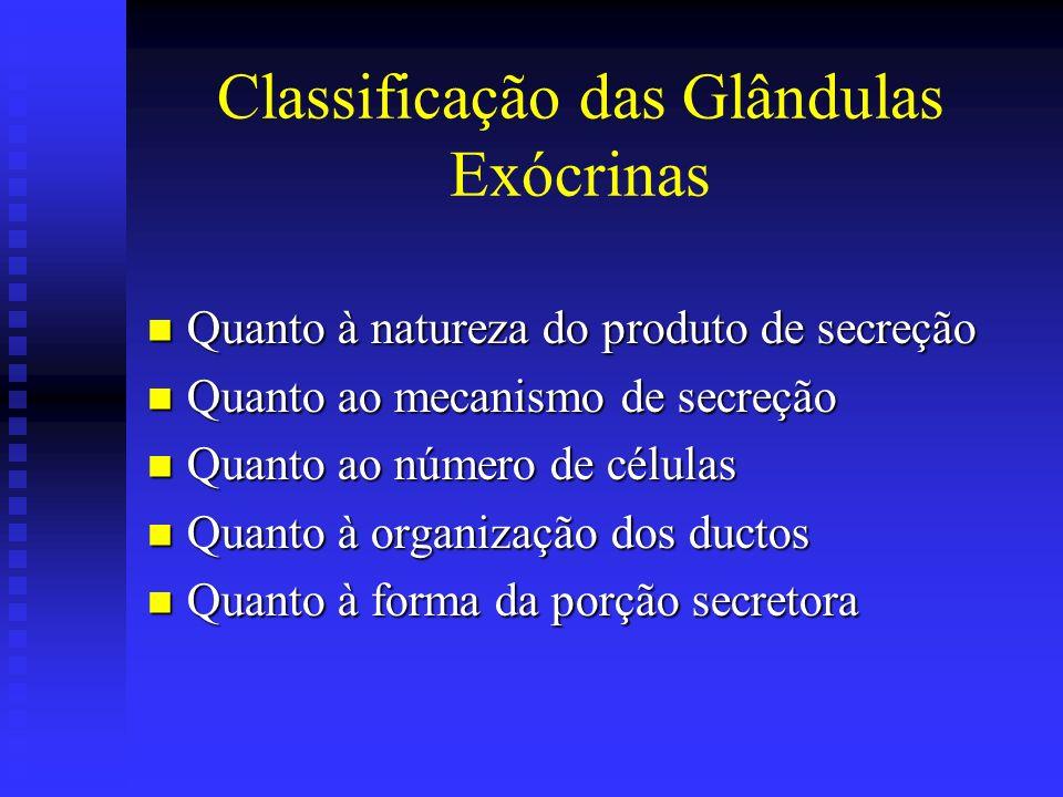 Classificação das Glândulas Exócrinas Quanto à natureza do produto de secreção Quanto à natureza do produto de secreção Quanto ao mecanismo de secreçã