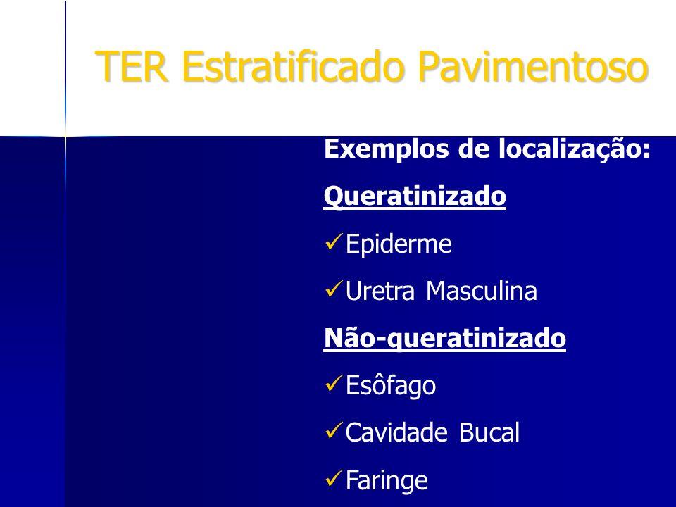 TER Estratificado Pavimentoso Exemplos de localização: Queratinizado Epiderme Uretra Masculina Não-queratinizado Esôfago Cavidade Bucal Faringe