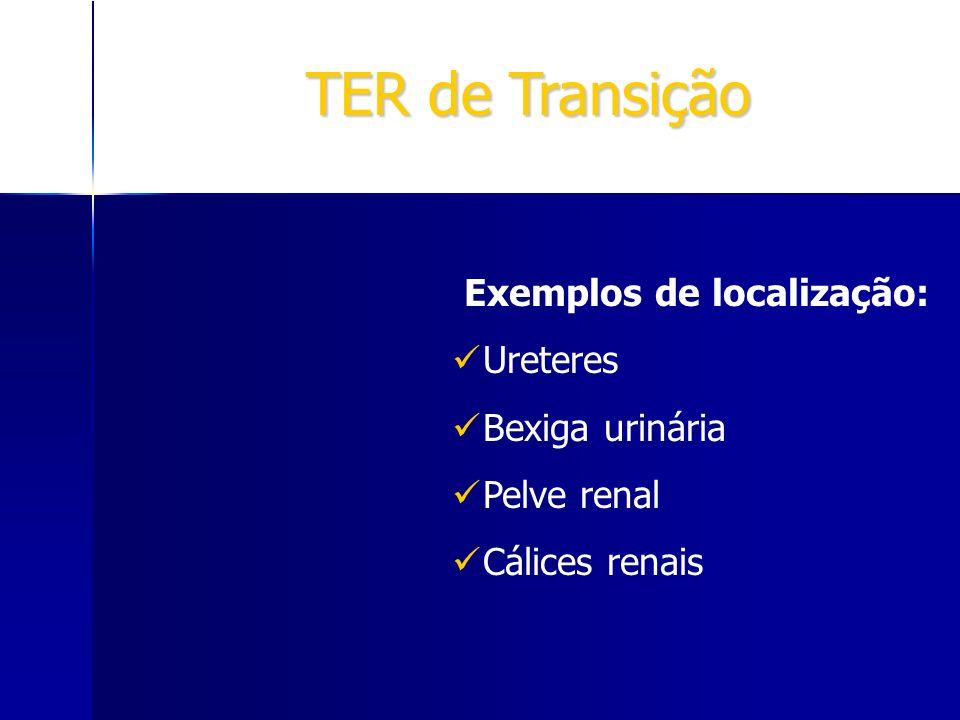 TER de Transição Exemplos de localização: Ureteres Bexiga urinária Pelve renal Cálices renais