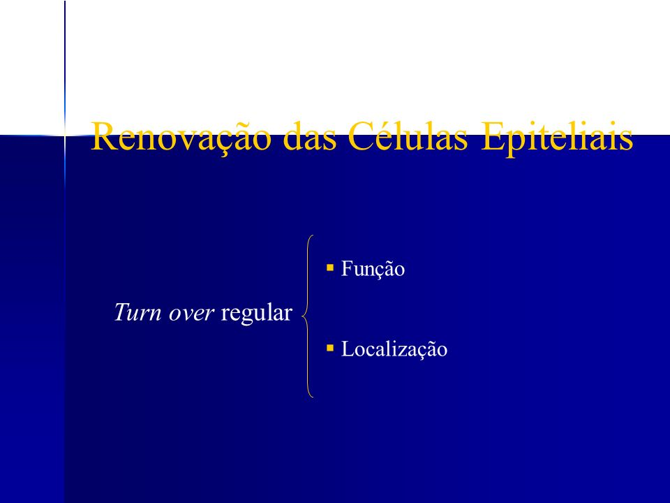 Renovação das Células Epiteliais Turn over regular Função Localização
