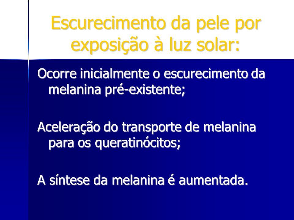 Escurecimento da pele por exposição à luz solar: Ocorre inicialmente o escurecimento da melanina pré-existente; Aceleração do transporte de melanina p