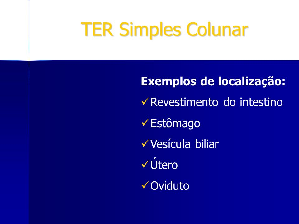 TER Simples Colunar Exemplos de localização: Revestimento do intestino Estômago Vesícula biliar Útero Oviduto