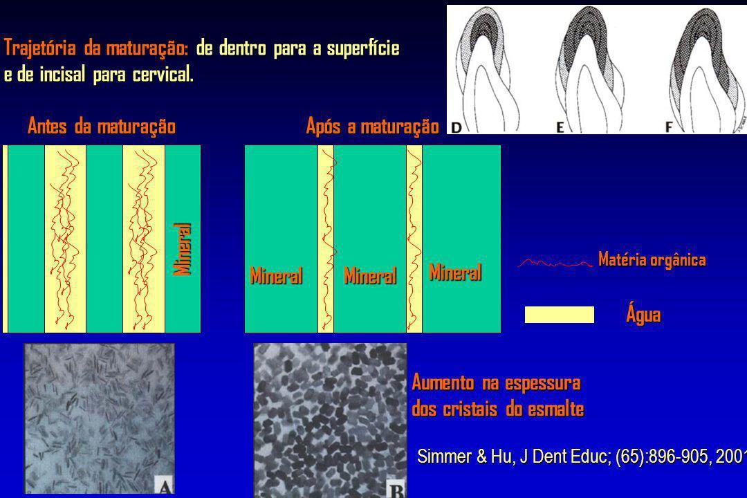 Antes da maturação Após a maturação Água MineralMineral Mineral Mineral Matéria orgânica Trajetória da maturação: de dentro para a superfície e de inc