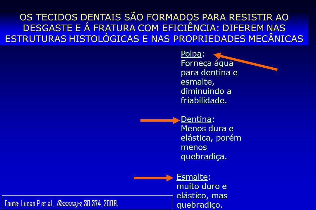 AS FORÇAS MASTIGATÓRIAS SÃO DE ATÉ 1000 N E PODEM GERAR DESGASTE E FRATURA Desgaste (inicia na superfície) Fratura (inicia na junção (inicia na junção com a dentina) Fonte: Lawn B & Lee JJW, Acta Biomater, 2009.