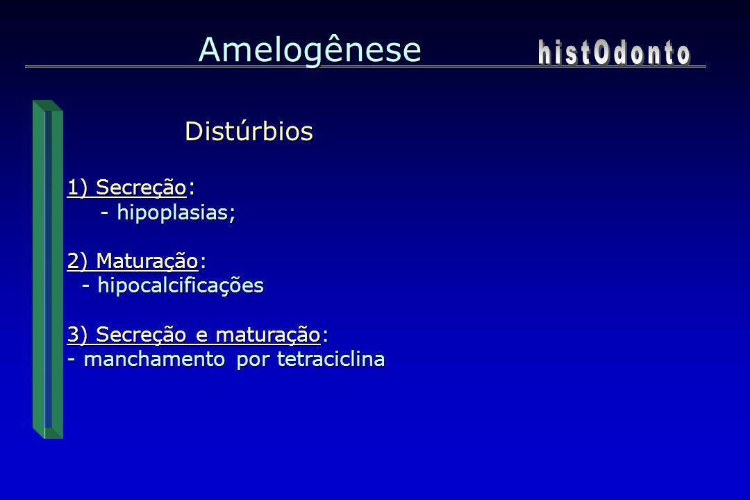 Distúrbios 1) Secreção : - hipoplasias; 2) Maturação: - hipocalcificações - hipocalcificações 3) Secreção e maturação: - manchamento por tetraciclina