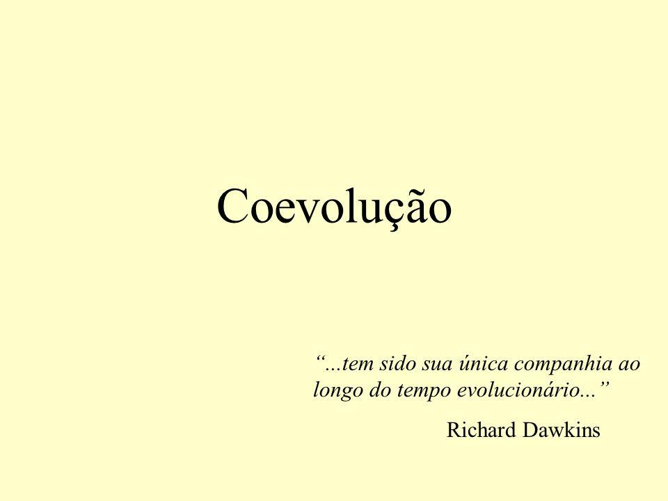 Coevolução...tem sido sua única companhia ao longo do tempo evolucionário... Richard Dawkins