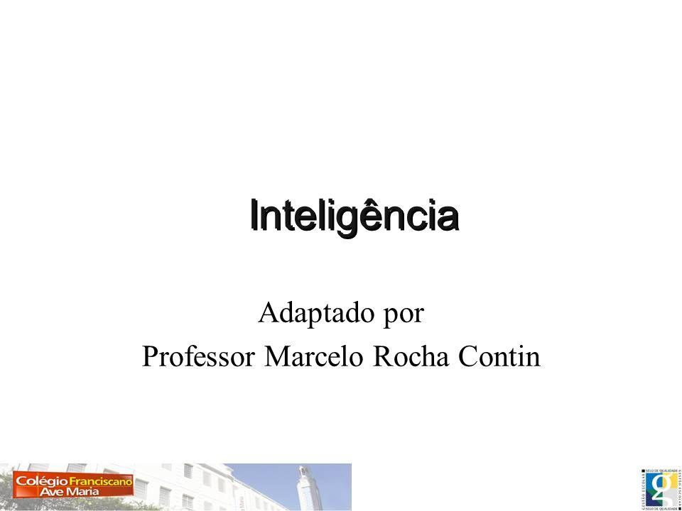 Inteligência Adaptado por Professor Marcelo Rocha Contin