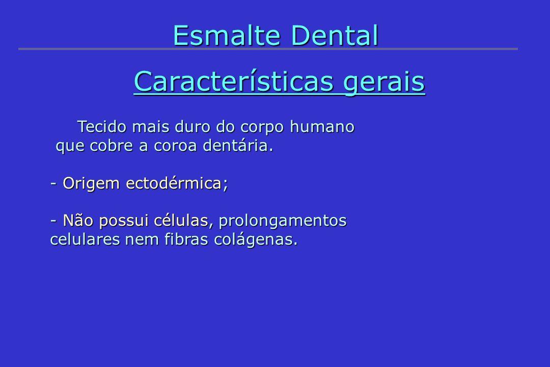 Esmalte Dental Características gerais Tecido mais duro do corpo humano Tecido mais duro do corpo humano que cobre a coroa dentária. que cobre a coroa