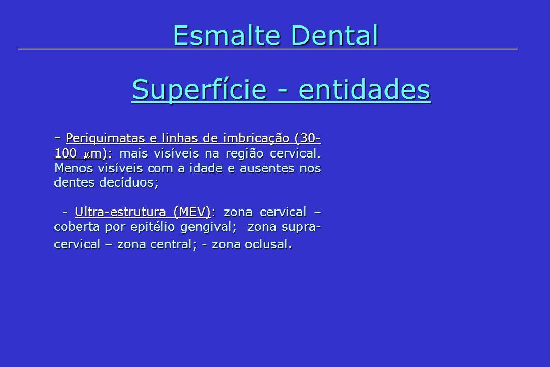 - Periquimatas e linhas de imbricação (30- 100 m): mais visíveis na região cervical. Menos visíveis com a idade e ausentes nos dentes decíduos; - Ultr