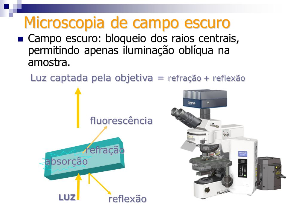 Microscopia de campo escuro Campo escuro: bloqueio dos raios centrais, permitindo apenas iluminação oblíqua na amostra. LUZ absorção Luz captada pela