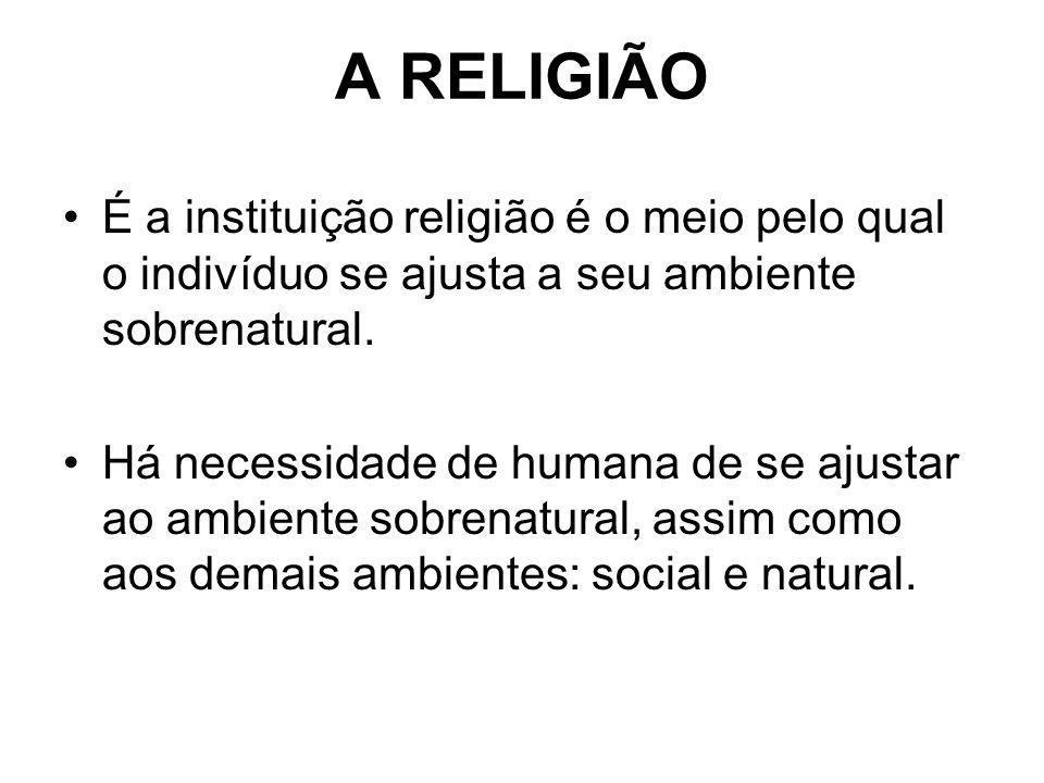 A RELIGIÃO É a instituição religião é o meio pelo qual o indivíduo se ajusta a seu ambiente sobrenatural. Há necessidade de humana de se ajustar ao am
