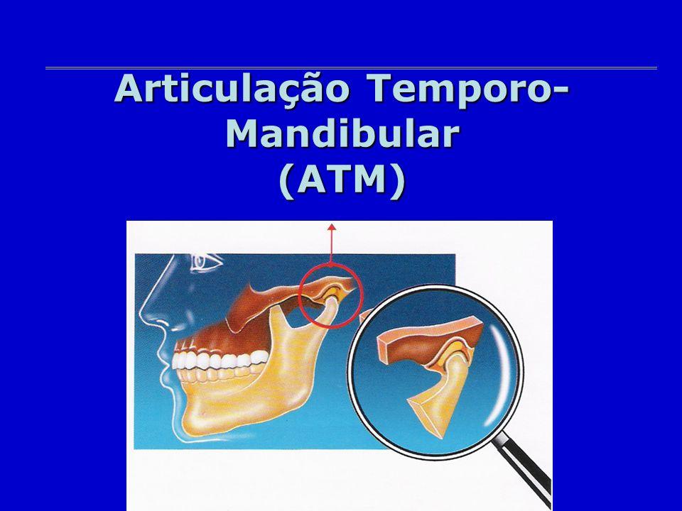 Articulação Temporo- Mandibular (ATM)