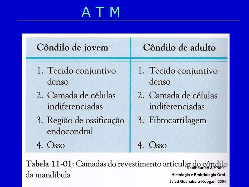 Katchburian & Arana: Histologia e Embriologia Oral, 2a ed Guanabara-Koogan, 2004 A T M