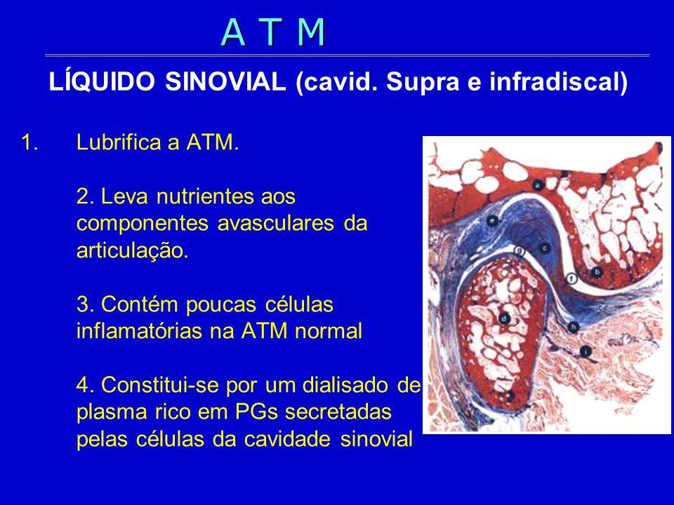 1.Lubrifica a ATM. 2. Leva nutrientes aos componentes avasculares da articulação. 3. Contém poucas células inflamatórias na ATM normal 4. Constitui-se