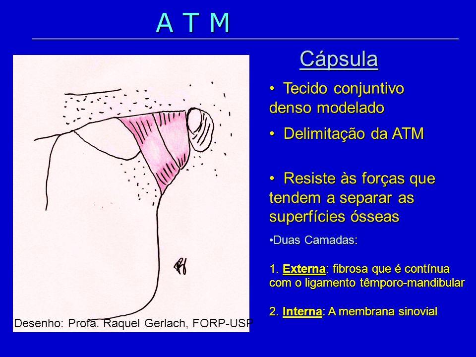Cápsula Delimitação da ATM Delimitação da ATM Resiste às forças que tendem a separar as superfícies ósseas Resiste às forças que tendem a separar as s