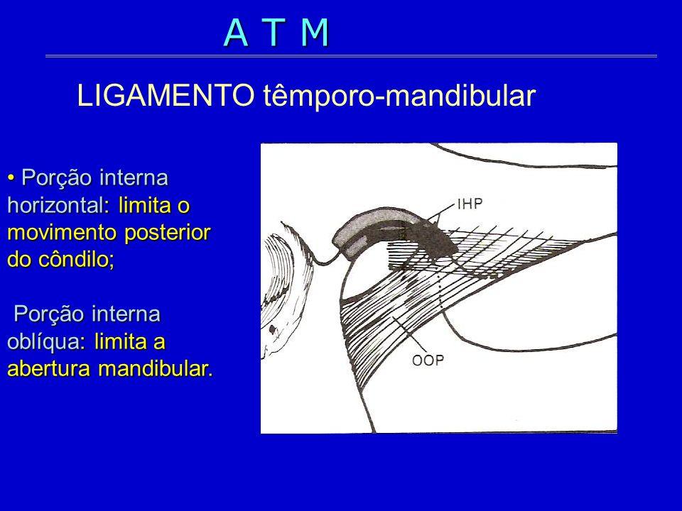 Porção interna horizontal: limita o movimento posterior do côndilo; Porção interna oblíqua: limita a abertura mandibular. Porção interna horizontal: l