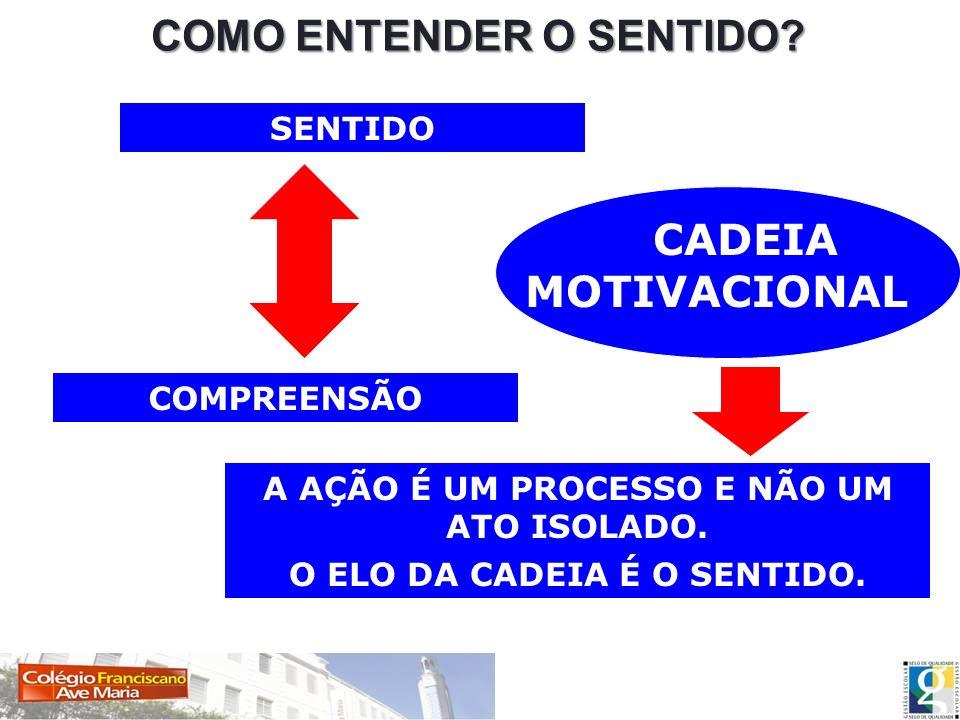 COMO ENTENDER O SENTIDO? SENTIDO COMPREENSÃO CADEIA MOTIVACIONAL A AÇÃO É UM PROCESSO E NÃO UM ATO ISOLADO. O ELO DA CADEIA É O SENTIDO.