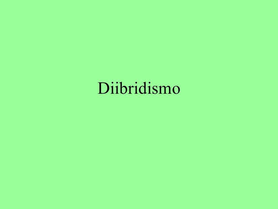 Diibridismo