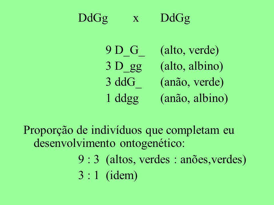 DdGgxDdGg 9 D_G_(alto, verde) 3 D_gg (alto, albino) 3 ddG_(anão, verde) 1 ddgg(anão, albino) Proporção de indivíduos que completam eu desenvolvimento