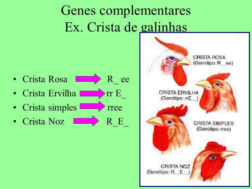 Genes complementares Ex. Crista de galinhas Crista Rosa R_ ee Crista Ervilha rr E_ Crista simples rree Crista Noz R_E_