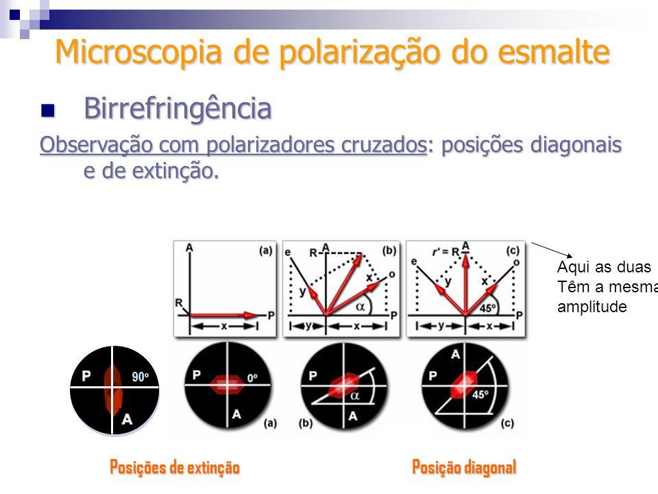 Birrefringência Birrefringência Observação com polarizadores cruzados: posições diagonais e de extinção. Microscopia de polarização do esmalte 90 o Po