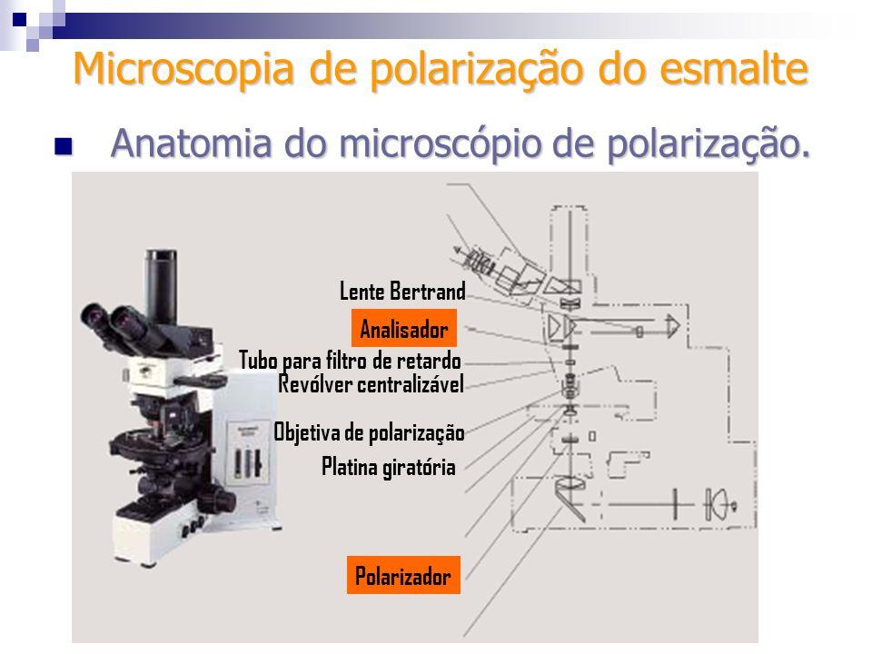 Polarizador Platina giratória Analisador Revólver centralizável Objetiva de polarização Tubo para filtro de retardo Microscopia de polarização do esma