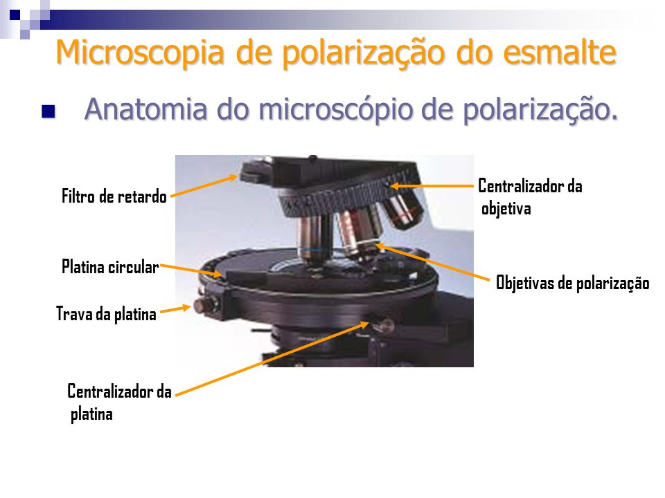 Microscopia de polarização do esmalte Platina circular Filtro de retardo Centralizador da platina Centralizador da objetiva Anatomia do microscópio de