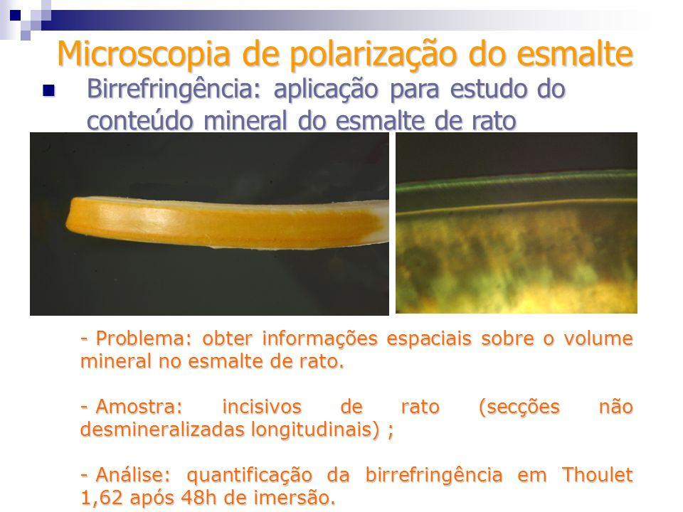 - Problema: obter informações espaciais sobre o volume mineral no esmalte de rato. - Amostra: incisivos de rato (secções não desmineralizadas longitud