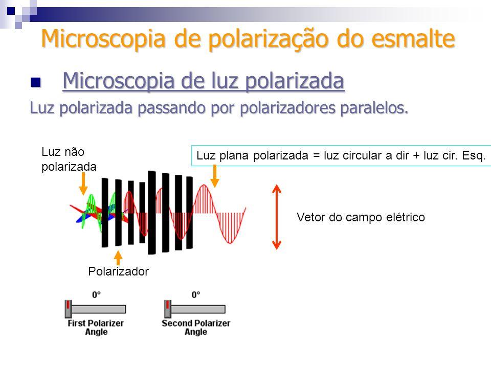 Microscopia de luz polarizada Microscopia de luz polarizada Luz polarizada passando por polarizadores paralelos. Luz plana polarizada = luz circular a