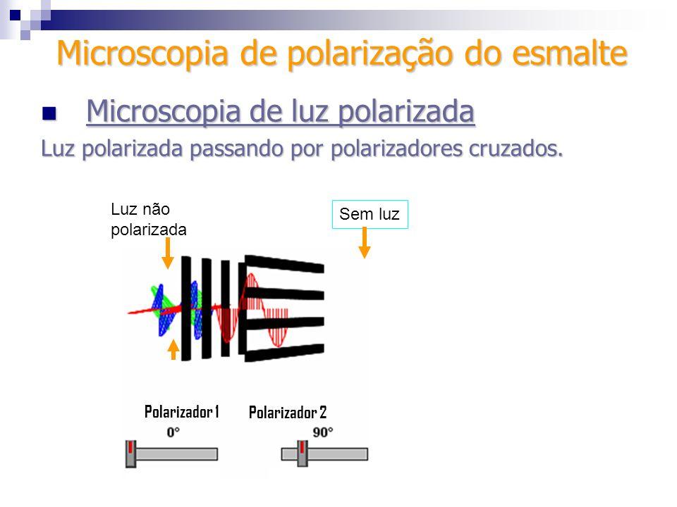 Sem luz Luz não polarizada Polarizador 1 Polarizador 2 Microscopia de luz polarizada Microscopia de luz polarizada Luz polarizada passando por polariz