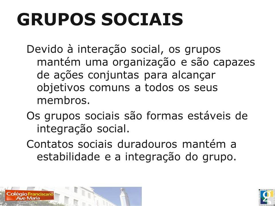 GRUPOS SOCIAIS Devido à interação social, os grupos mantém uma organização e são capazes de ações conjuntas para alcançar objetivos comuns a todos os