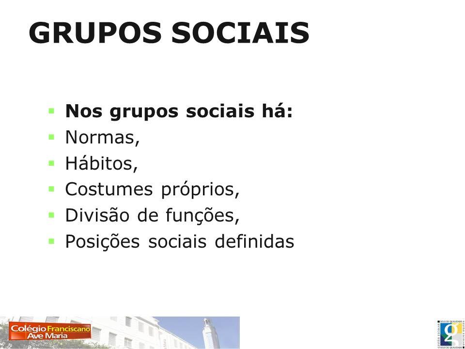 GRUPOS SOCIAIS Nos grupos sociais há: Normas, Hábitos, Costumes próprios, Divisão de funções, Posições sociais definidas