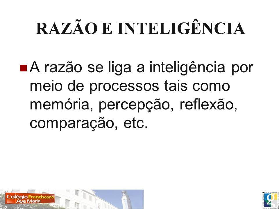 RAZÃO E INTELIGÊNCIA A razão se liga a inteligência por meio de processos tais como memória, percepção, reflexão, comparação, etc.