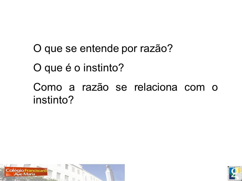 O que se entende por razão? O que é o instinto? Como a razão se relaciona com o instinto?