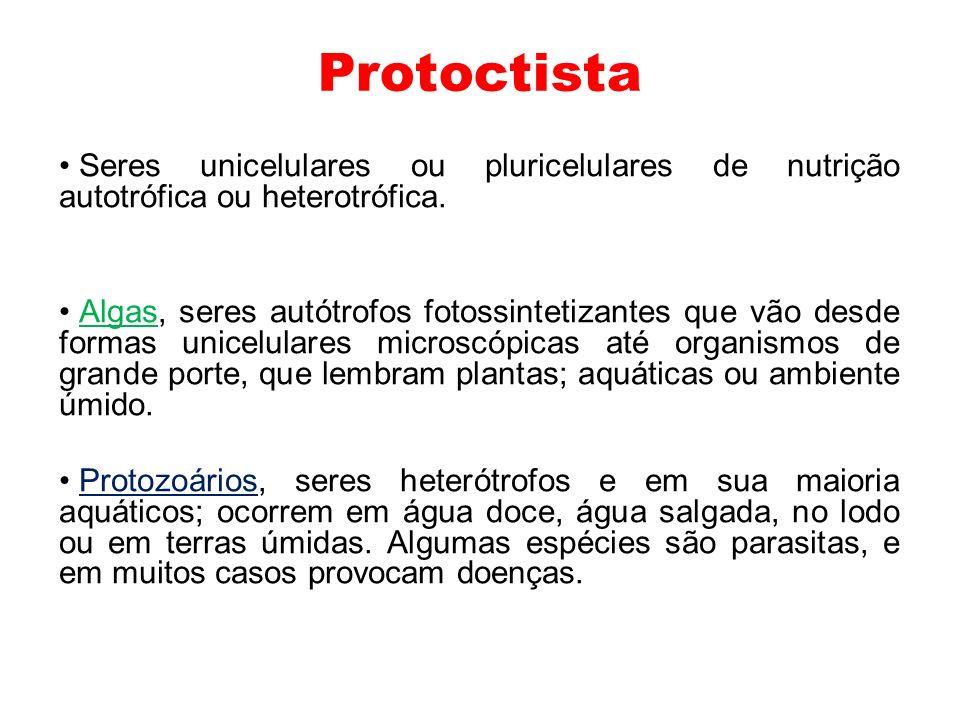 Protoctista Seres unicelulares ou pluricelulares de nutrição autotrófica ou heterotrófica. Algas, seres autótrofos fotossintetizantes que vão desde fo