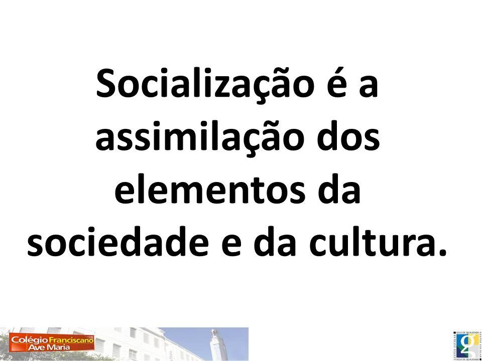 OBJETIVOS DA SOCIALIZAÇÃO Adequar os indivíduos para a vida em sociedade.