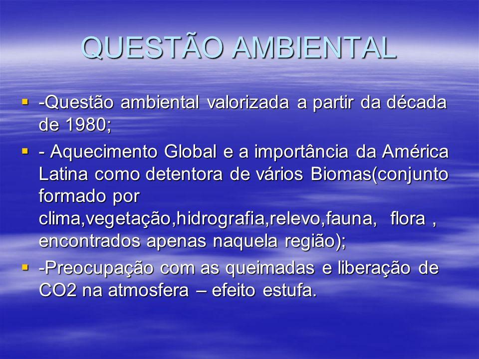 QUESTÃO AMBIENTAL -Questão ambiental valorizada a partir da década de 1980; -Questão ambiental valorizada a partir da década de 1980; - Aquecimento Gl
