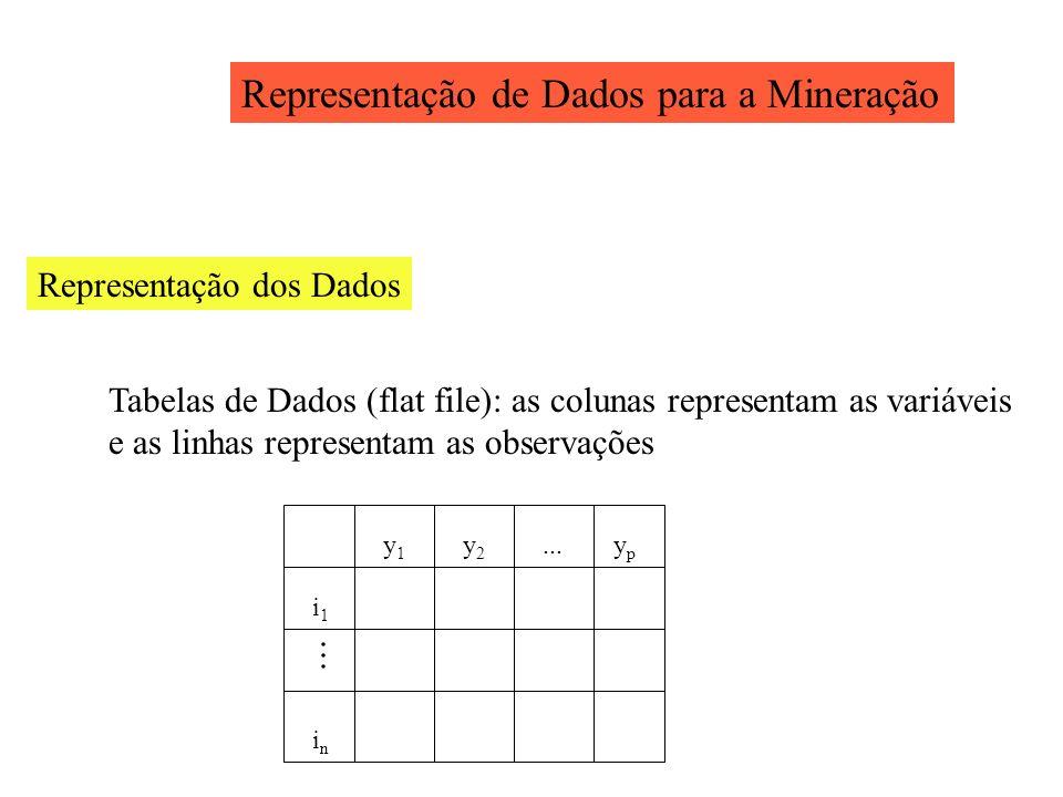 Representação de Dados para a Mineração Representação dos Dados Tabelas de Dados (flat file): as colunas representam as variáveis e as linhas represen
