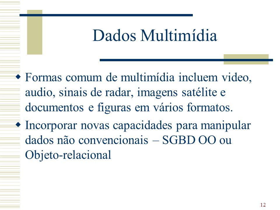 12 Dados Multimídia Formas comum de multimídia incluem video, audio, sinais de radar, imagens satélite e documentos e figuras em vários formatos. Inco