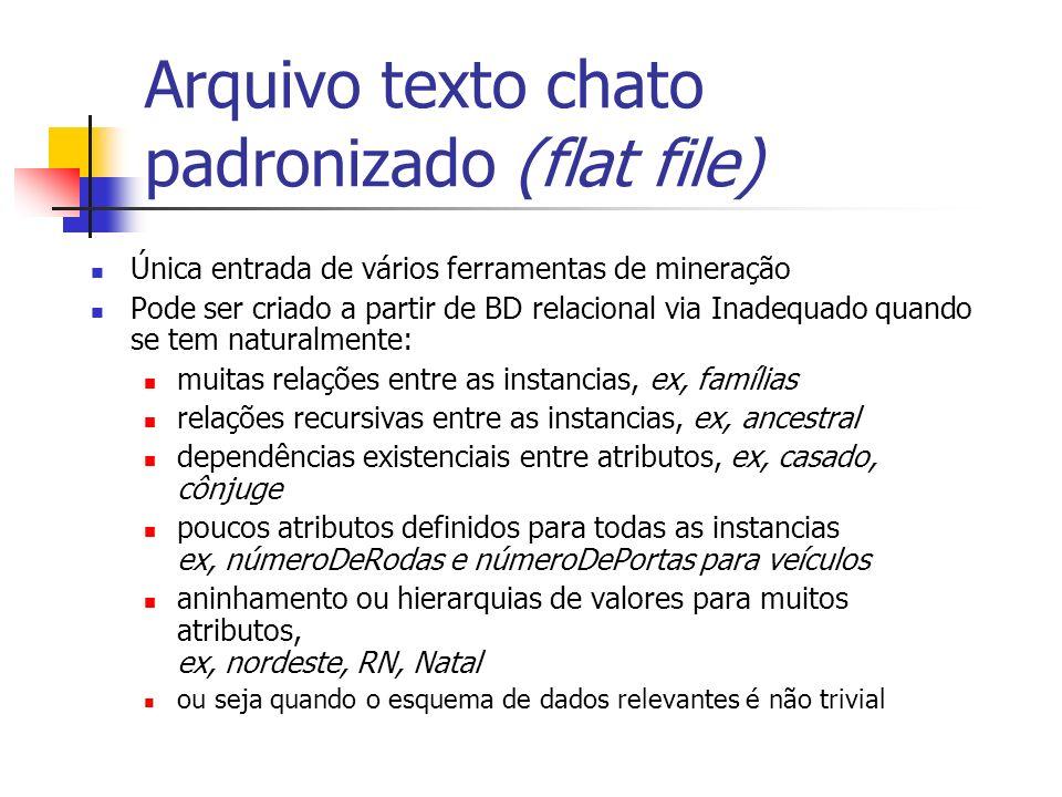 Arquivo texto chato padronizado (flat file) Única entrada de vários ferramentas de mineração Pode ser criado a partir de BD relacional via Inadequado